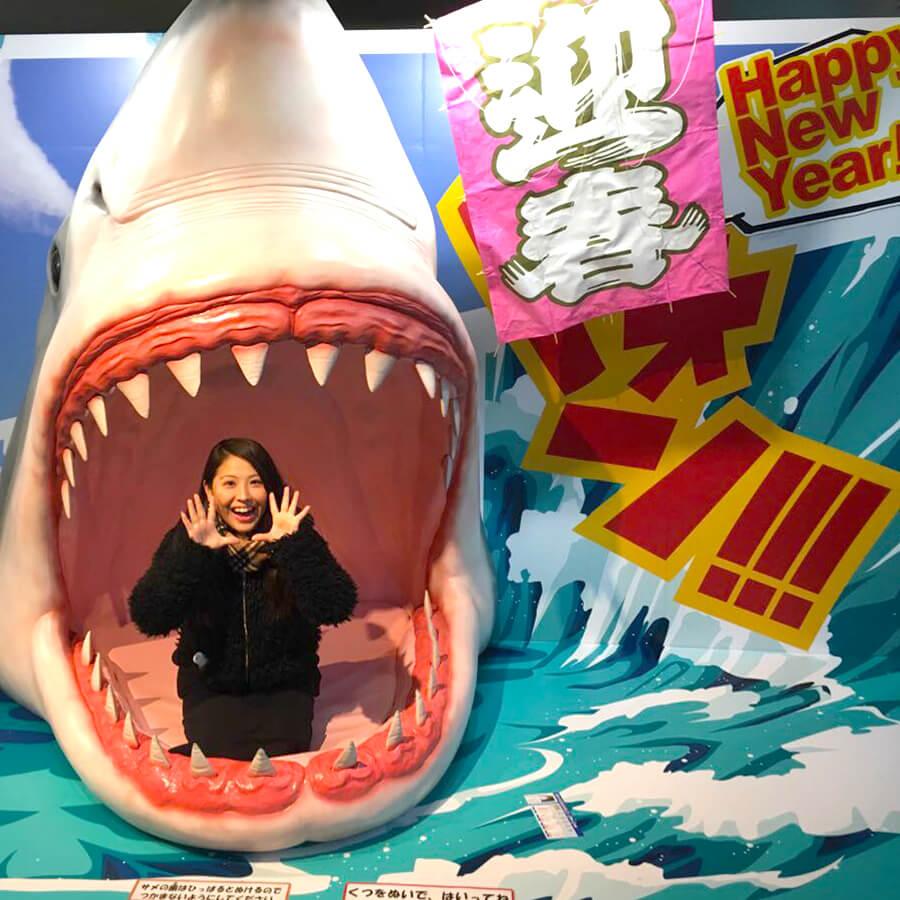 サメの卵や赤ちゃんもみれちゃう「大洗水族館」がオススメ